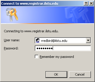 Internet Explorer Login